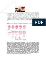 Oral manif in boli sistemice.doc
