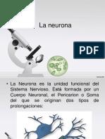 la-neurona.ppt