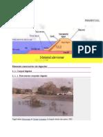 Elemente constructive ale digurilor.doc
