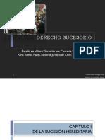 Derecho Sucesorio 2015 (1).pdf
