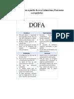 DOFA Para la obtencion de vino-uva caimarona.docx