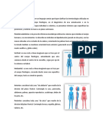 1575680839683_Diccionario Anatómico .docx