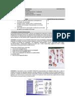 NUTR_Sistemadigestórioeendócrino_APS 2.docx