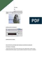 TIPOS DE ANIMACIONES.docx