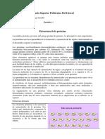 consulta de la estructura de la proteina.docx