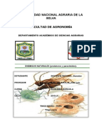Pheidole Megacephala Pdf.docx