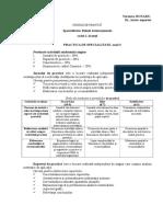 cerinte jurnal si raport de  practica