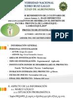 PROYECTO DE CAMOTE mejorado.pptx
