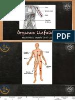 Órganos Linfoides y Células.pdf