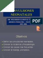 Clase 13 SD CONVULSIVO EN NEONATOS corregido.ppt
