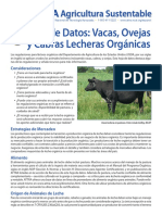 cattle_sheep_goats_for_dairy_esp