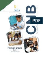 1o Grado CNB Nivel de Educación Primaria