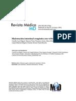 malrotacion.pdf