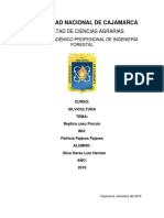 Replica Porcon.docx