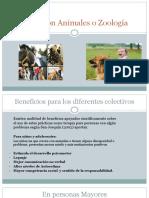 Terapia con Animales o Zoología.pptx