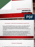 organos de invierte.pe lira.pptx