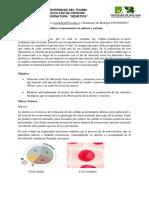 Cambios Cromosomicos en mitosis y meiosis.docx