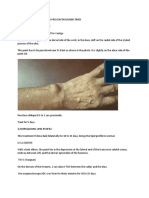 Vertigo and lipid profile treatments. Easy and fast..pdf