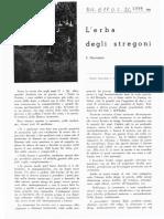 Erba Del Diavolo