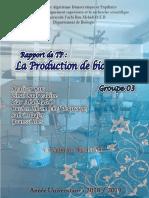 Rapport de TP Biochimie microbienne