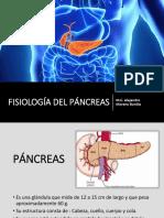 FISIOLOGÍA DEL PÁNCREAS.pptx
