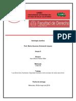 Axiologia Juridica - Investigacion DH.docx