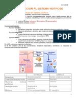 6. INTRODUCCION AL SISTEMA NERVIOSO.docx