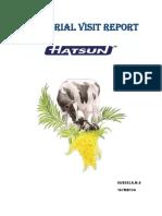 INDUSTRIAL VISIT REPORT.docx