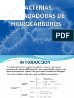 BACTERIAS_DEGRADADORAS_DE_HIDROCARBUROS.pptx