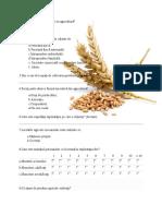 Aveți studii de specialitate in agricultură.docx