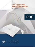 CAQ (2010) Anti Fraud Report