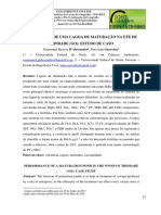 DESEMPENHO DE UMA LAGOA DE MATURAÇÃO NA ETE DE TRINDADE (GO)
