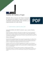 Análisis de Carbón y Coque.docx