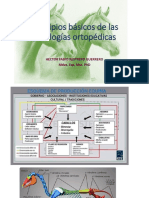 Principios básicos de las patologías ortopédicas.pptx