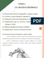 Tema 1 Intervenţii chirurgicale în regiunea craniocerebrală.pptx