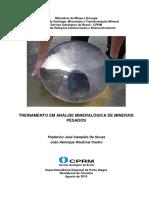 rli_treinamento_minerais_pesados.pdf