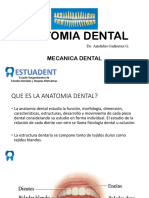 ANATOMIA DENTAL(mecanica dental).pptx