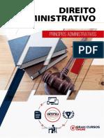 16318215-principios-administrativos (1).pdf