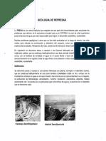 GEOLOGIA  DE REPRESAS_Gilberto Cruzado