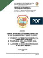 TDR  LIQUIDACION FISICO Y TECNICA CMAN SOCOS.docx