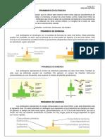 pirc3a1mides-ecolc3b3gicas.pdf