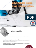 ACT 7 .1 Cuadro esquemático.pdf