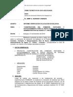 Informe Tecnico EGASA