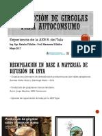 20170524_-_inta_-_produccion_de_girgolas_para_autoconsumo.pdf