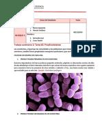 PROPIEDADES EMERGENTES DE LOS ECOCISTEMAS.pdf