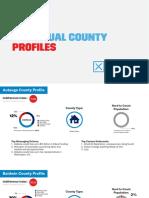 Individual County Profiles January 2020