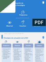Principios_PAP.pdf