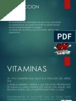 VITAMINAS Y ALIMENTOS.pptx