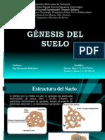 Génesis del Suelo.pptx
