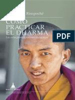 Cómo practicar el dharma.